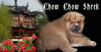 Chowchowshrek